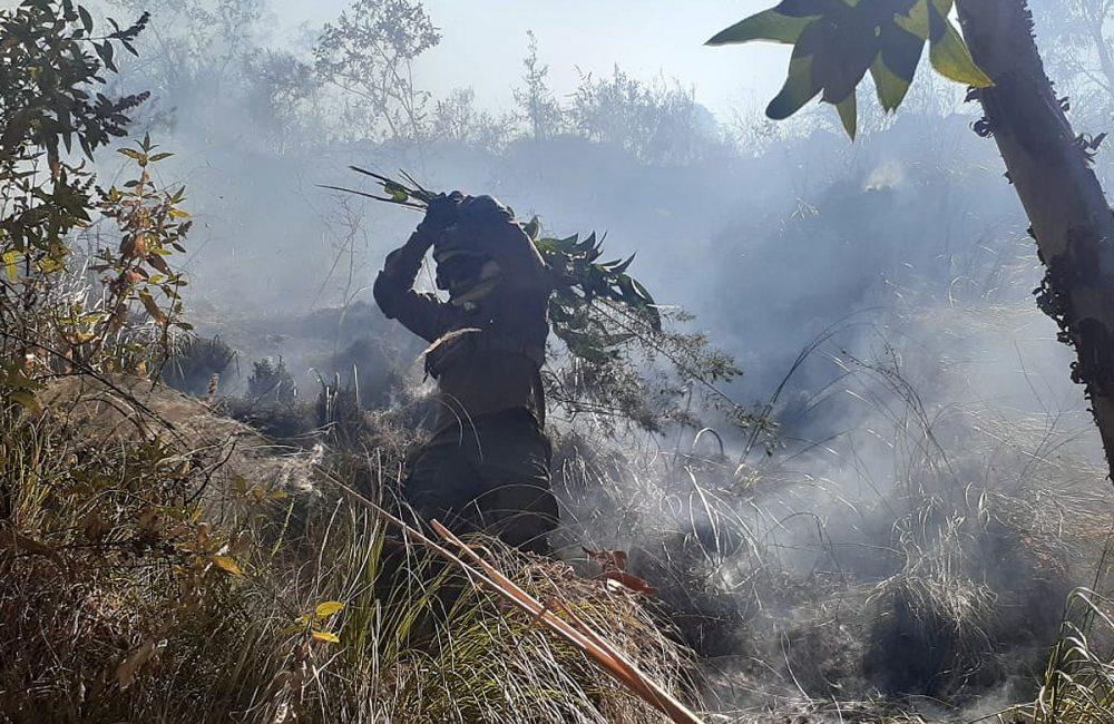 Ante el avance del fuego en el oriente boliviano, el Gobierno pide a la Asamblea Legislativa aprobar norma para anular la Ley de desmontes.